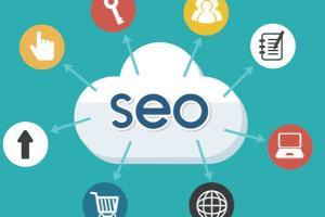 Portfolio for SEO Articles and Blogging