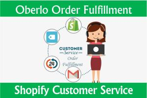 Portfolio for Shopify Customer Support
