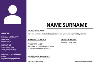 Portfolio for Resume/CV (Format and creation)