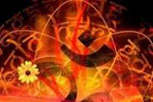 Portfolio for Articles for yoga,health,gardening blog