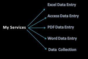 Portfolio for I will do Data entry,Data collection