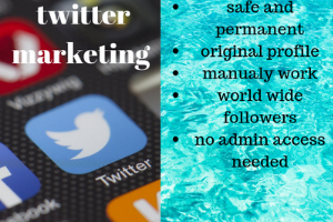 Portfolio for twitter marketing