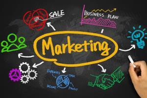 Portfolio for Marketing Assistant