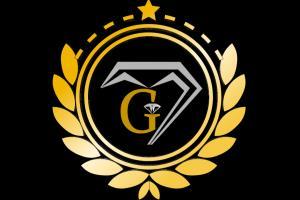 Portfolio for The logo designer