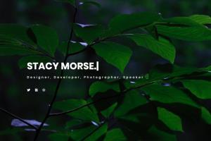 Portfolio for Custom Graphic Design