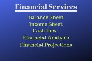 Portfolio for Financial Statements Preparation