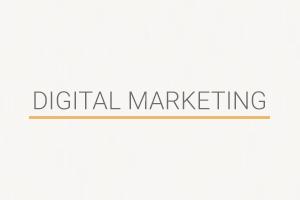 Portfolio for Digital Marketing | Branding | Graphic D