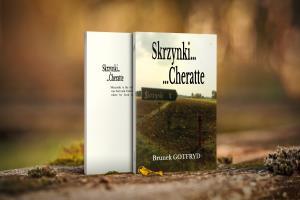 Portfolio for I will do a unique book cover