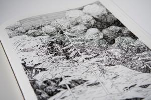 Portfolio for artiste illustrateur -designer graphique