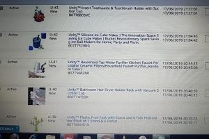 Portfolio for Amazon and Flipkart listing help