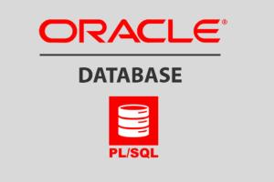 Portfolio for Oracle PL/SQL Developer
