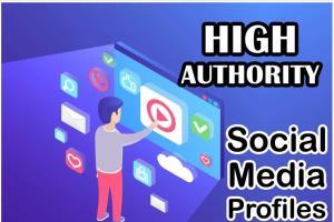 Portfolio for Create High Quality Social Profiles