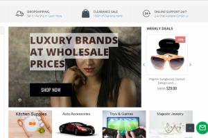 Portfolio for I will build professional shopify store