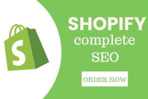 Portfolio for Shopify SEO Optimization
