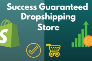 Portfolio for DROPSHIPPING STORE PRODUCT HUNTER
