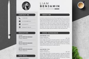 Portfolio for Resume & Cover Letter Writer