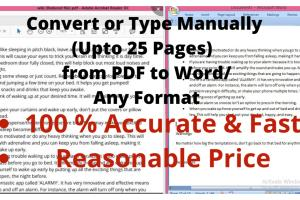 Portfolio for Data Entry & PDF Conversion