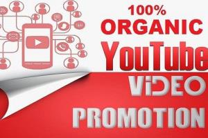 Portfolio for I will do fast organic youtube promotion