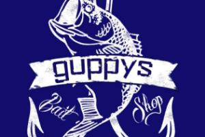 Smart Contract Audit - Fishnchips
