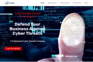 Portfolio for Business Website Design & Development
