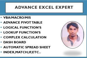 Portfolio for ADVANCE EXCEL EXPERT