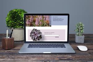 Portfolio for Web UX/UI Designer