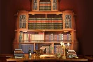 Portfolio for Writing, Research & Consultation