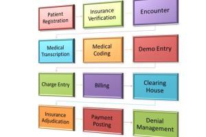 Portfolio for Virtual Asst_Medical billing/coding