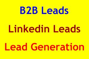Portfolio for Lead Generation & Email List Building