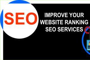 Portfolio for On page SEO | SEO Backlinking