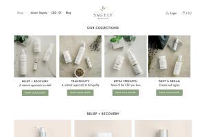 Portfolio for Shopify Developer / Shopify Expert