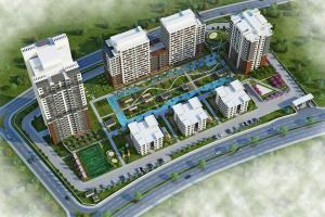Portfolio for Residence - Commercial Design