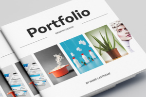 Portfolio for eCommerce - WordPress - Web Applications