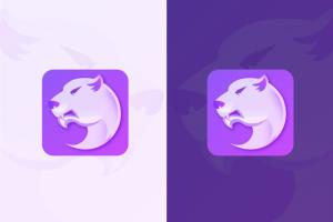 Portfolio for I will design IOS and android app icon