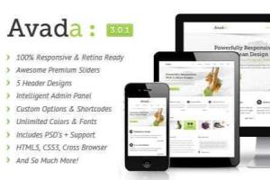 Portfolio for I will customize avada theme