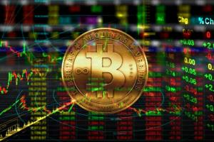 Portfolio for Bitcoin Exchange