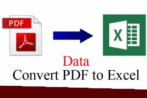 Portfolio for PDF to Excel Data Conversion