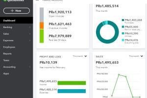 Portfolio for Intuit Quickbooks Expert & Accountant
