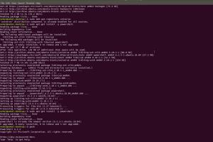 Portfolio for Set up PowerShell in linux system