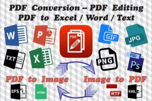 Portfolio for PDF Conversion to Word, Excel