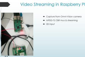 Portfolio for Professional Rspberry PI expert