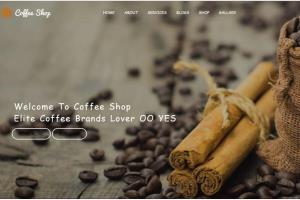 Portfolio for I will create a Website Developer