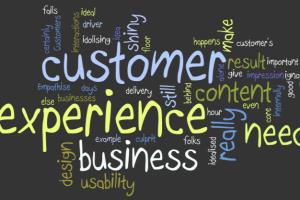 Portfolio for Customer Service Rep