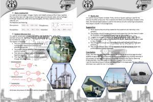 Portfolio for I will design Report & Documents