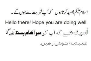 Portfolio for Inpage Urdu Composing and Editing