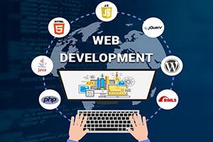 Portfolio for Ecommerce/WordPress/Front End Developer