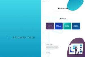Portfolio for Custom Website Design & Build