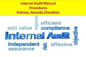Portfolio for Internal Auditing