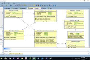 Portfolio for Database Developer, Analyst, Designer