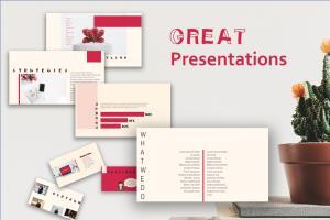 Portfolio for Infographics And PowerPoint Presentation
